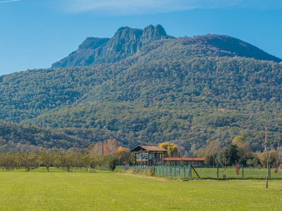 Properties in La Garrotxa to buy and rent - Lucas Fox