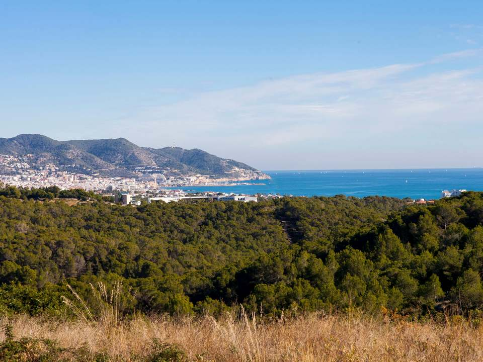 Properties in Mas d'en Serra to buy and rent - Lucas Fox