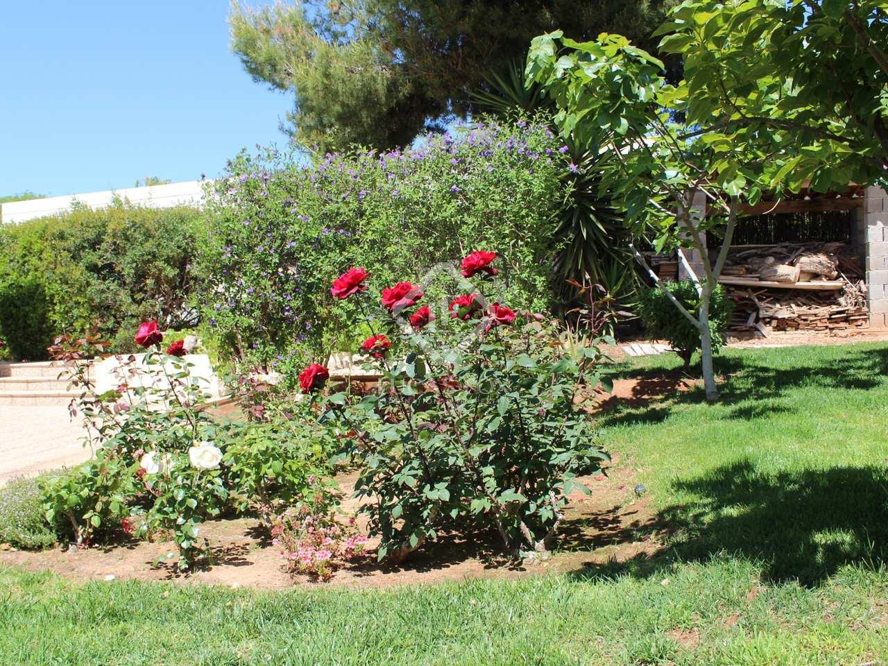 Huis villa van 442m te huur met 80m tuin in los for Huis met tuin te huur rotterdam