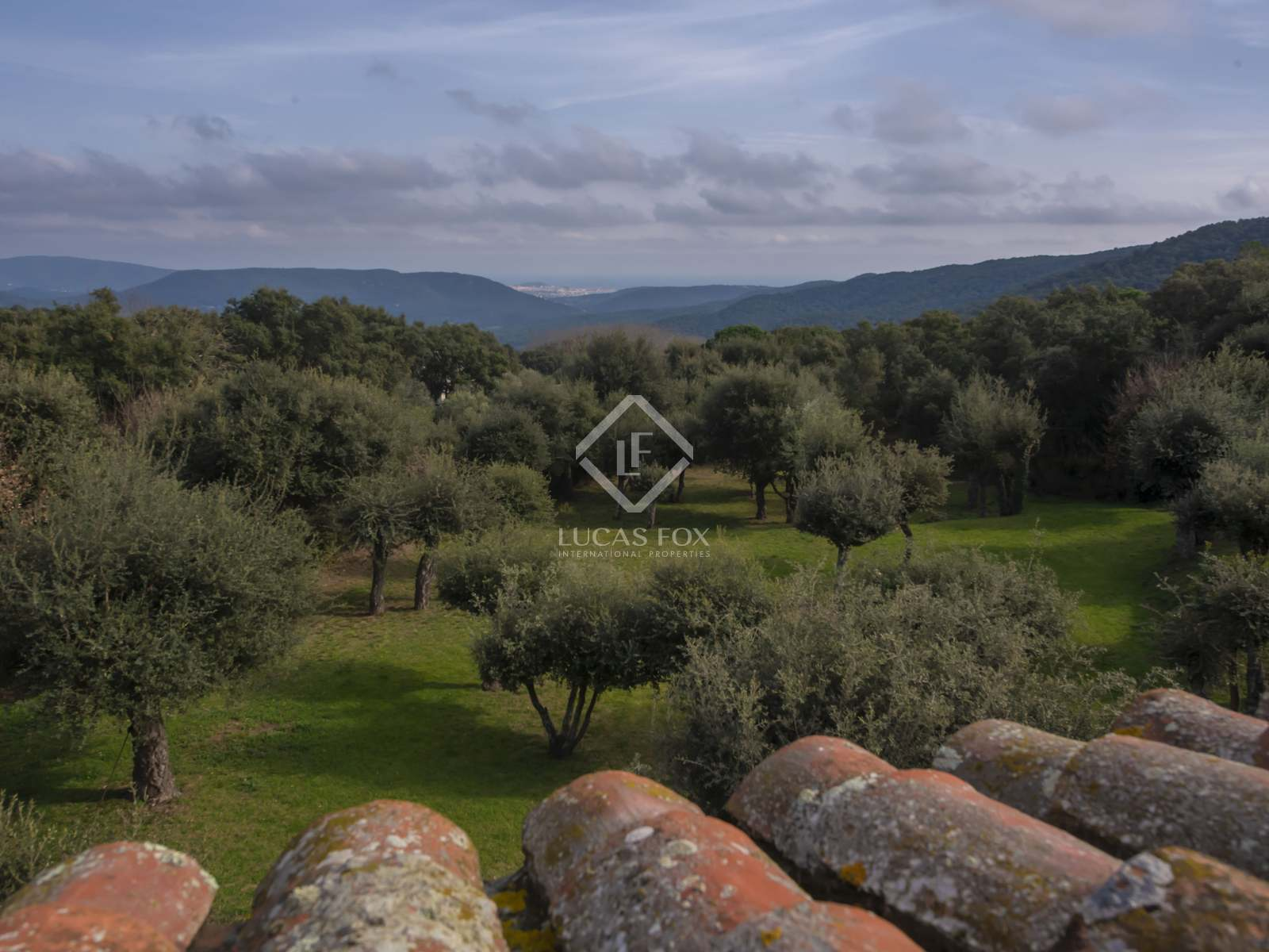 Views : Image of the property