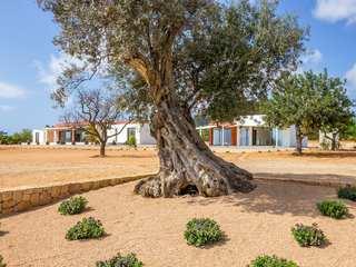 Espectacular propiedad con vistas en venta en Talamanca