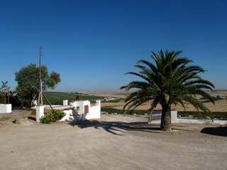 Country house for sale near Jerez, Andalucia, with vineyards