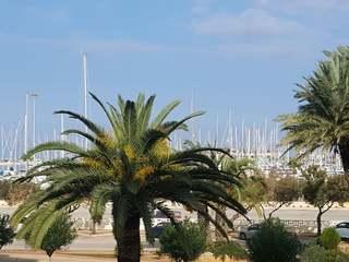 Apartamento en primera línea de mar, en venta en Dénia