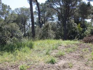 PLOTS from 130.000 € - walking distance to Tamariu beach