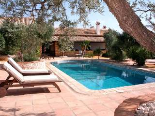 Country property with  olive farm for sale near to Seville