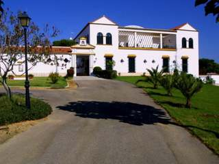 Beautiful country estate for sale close to Seville