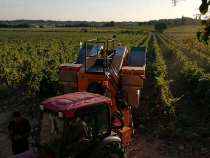 Vignobles de a vendre à South France, France