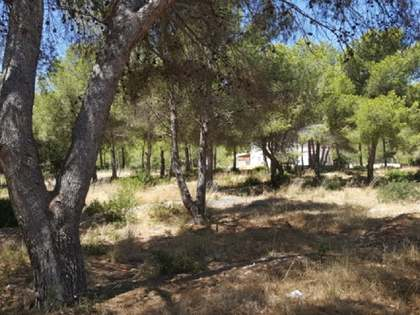 6,331m² plot for sale in Las Rotas, Denia
