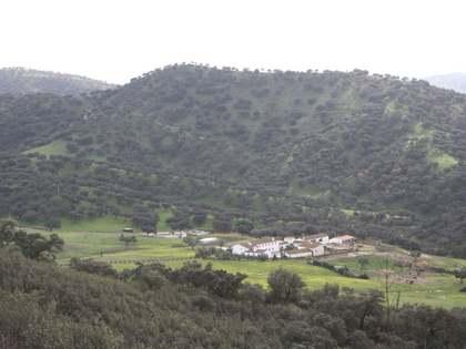 Landgoed/ Sportlandgoederen van 500m² te koop in Sevilla