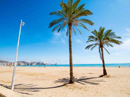 Beachfront penthouse for sale on the Valencia Coast