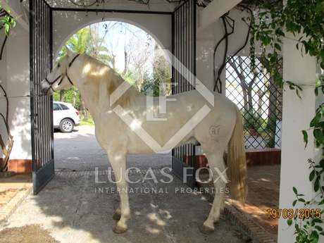 200-hectar estate for sale with equestrian facilities