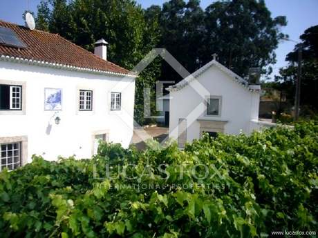 Gorgeous farm to buy near Sintra and Lisbon