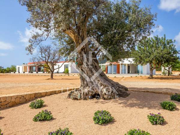 Spectacular property with views for sale in Talamanca
