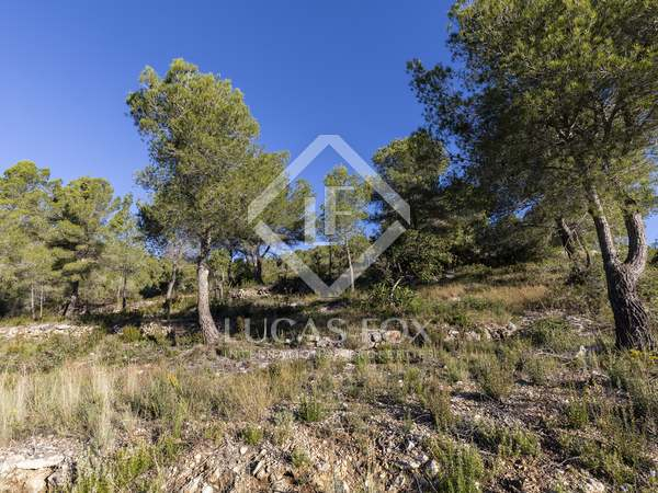 2,424 m² plot for sale in Mas Alba, Sant Pere de Ribes