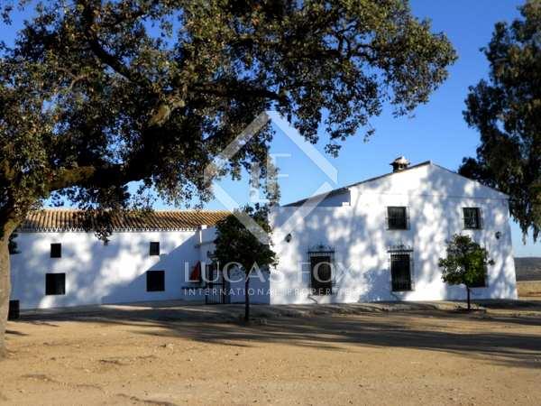 Finca rural en venta a 50 minutos de Sevilla